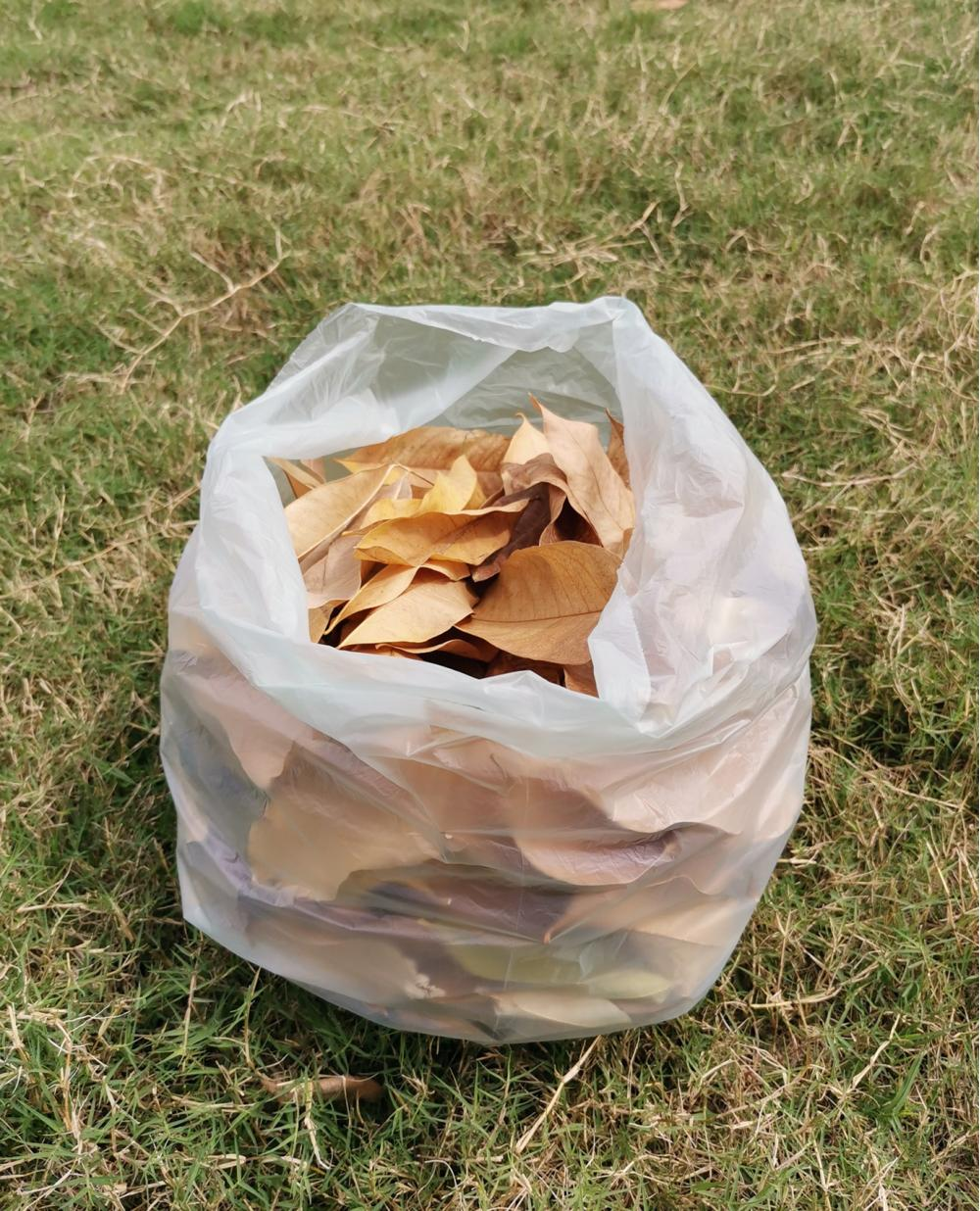 ASTM D6400 Garden Leaf Collection Bags