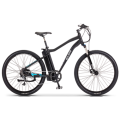 Single lithium electric bicycle