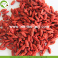 Best Quality Wholesale Dried Low Pesticide Goji Berry