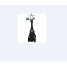 Electric Wedge Cast Iron Gate Valve