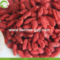 Wholesale Super Food Dried Propiedades Del Goji