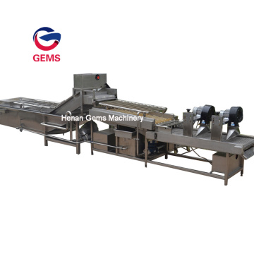 Commerical Fruit and Vegetable Blanching Equipment