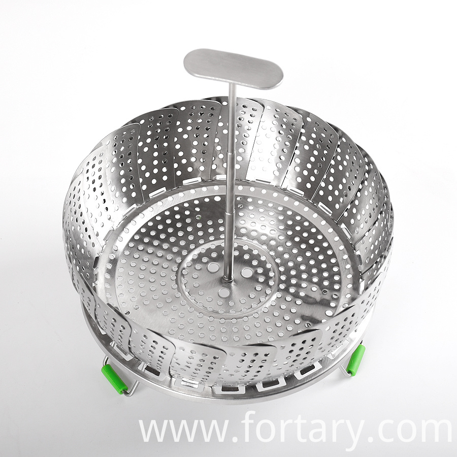 Flexible Handle Steamer
