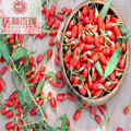 Goji berry/ Wolfberry /New crop organic goji berries