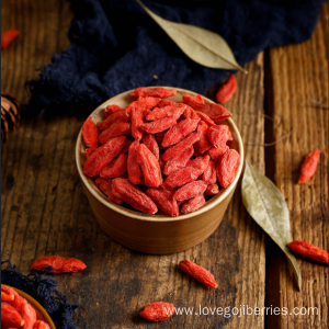 Best Taste Goji Berries from Ningxia 2018