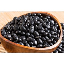 Small Black  Bean new Crop