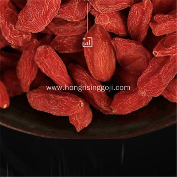 Ningxia Goji Berries Real Berry
