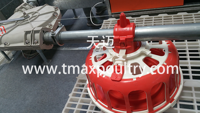 SHINE Automatic Feeding System