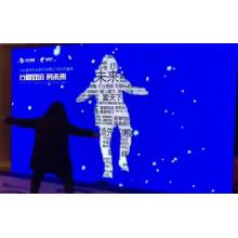 Somatosensory interactive LED screen