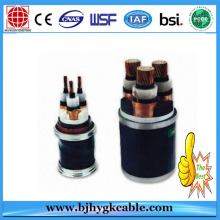 Medium voltage cable N2XS(F)2Y 1X50/16 under rated voltage 6/10 kV