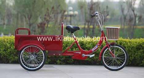 No Electric Tricycle With 2 Passenger Seats