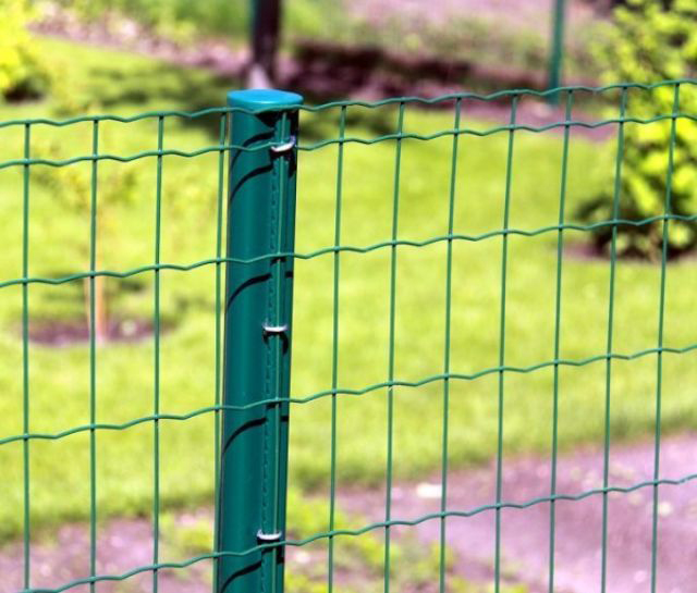 Grid Roll Galvanized Welded Wire Mesh Fence China Manufacturer