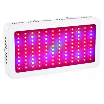 Full Spectrum 1200W LED Wäisslicht fir Planz