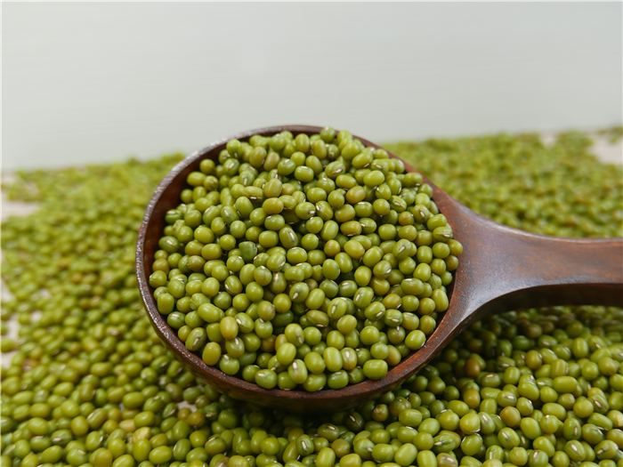 Natural And Organically Grown Green Mung Bean