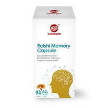 Memory Improvement Best Natural Brain Supplements