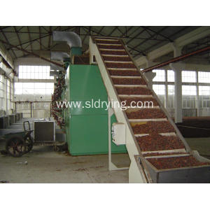 Dehydrated Vegetable Mesh Belt Dryer