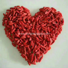 Dried goji berries wholesale from factory