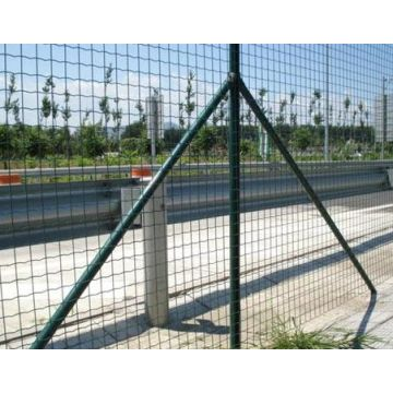 Galvanized PVC Coated Euro Fence from Factory Outlet