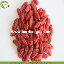 Factory Supply Fruit Low Sugar Diet Goji Berries