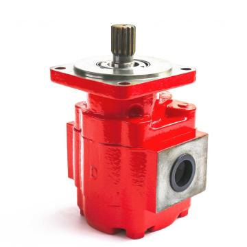 LBX Excavators external gear pump