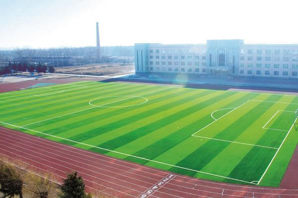 Artificial Grass for Football MT-Memo-Plus