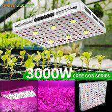EU/US Philzon COB LED Grow Lights Stock