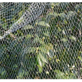 Anti Bird Trapping Netting