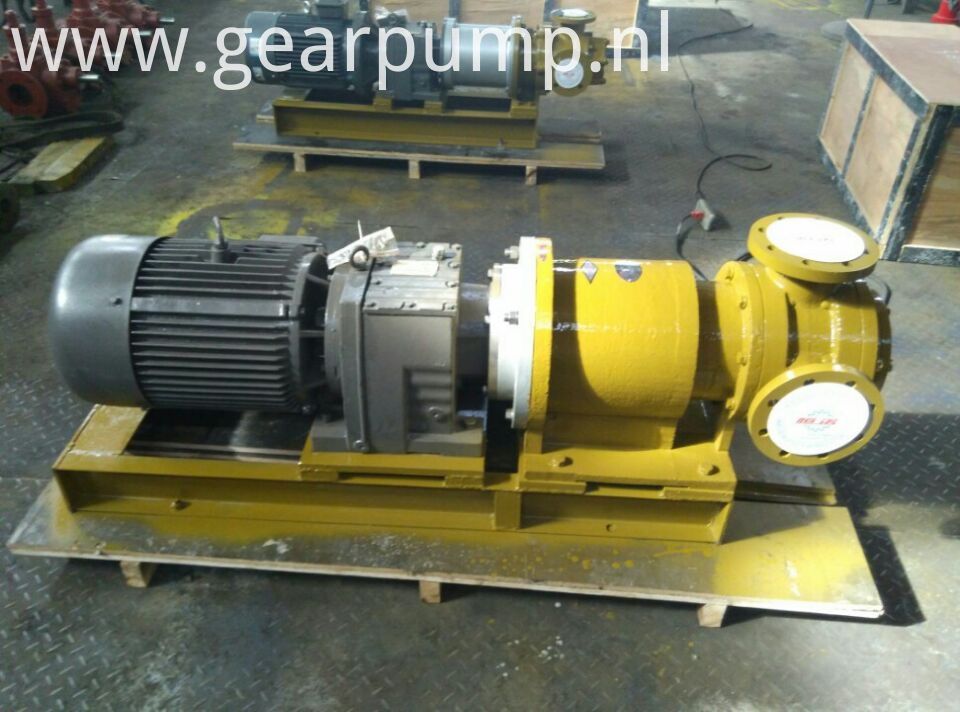 magnetic gear oil pump