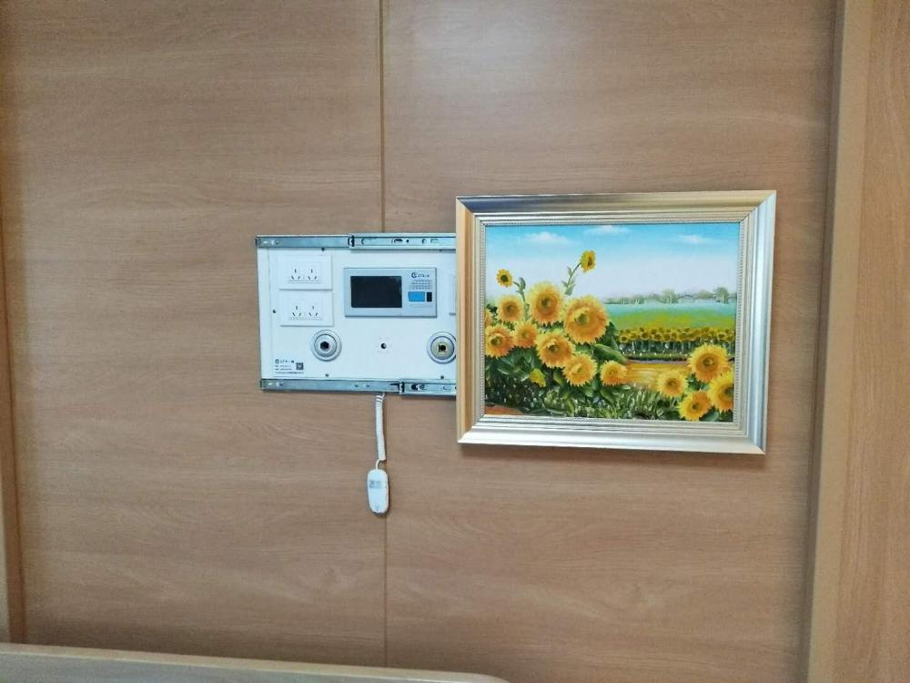 Hospital Mural Bed Head Panel for Sale