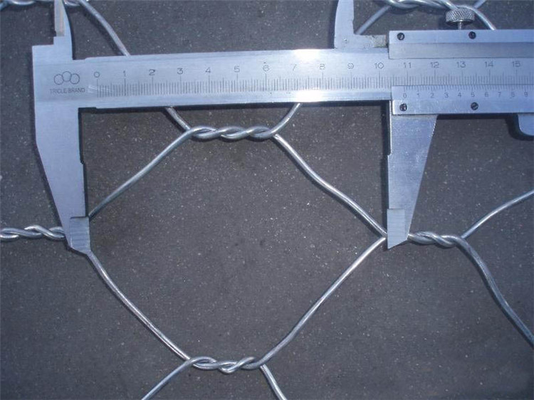 Hexagonal Wire Mesh a