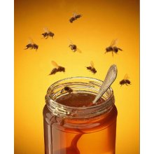buckwheat honey adequate quantity