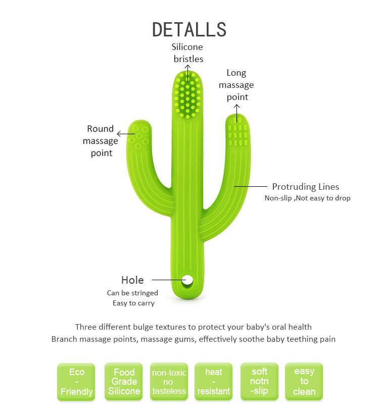 cactus teething toys