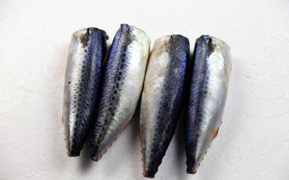 Sea Frozen Mackerel HGT