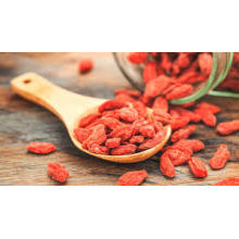 Low moisture Goji Berry for sale/sweet goji berry vitamins