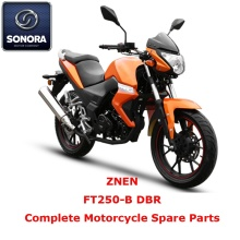 Leading Manufacturer for for Znen Scooter Starter Motor ZNEN FT250-B DBR Complete Motorcycle Spare Part supply to Germany Supplier