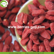 Factory Wholesale Sun Dried Cosmetic Diet Wolfberries