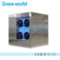 Snow world Plate Ice Machine For Seafood 3T