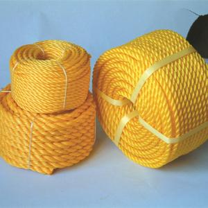 High Permance for Braid Polyethylene Rope Fishery Polyethylene 3/8/12-Strand Braid Rope supply to Philippines Importers