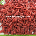 Factory Supply Natural Nutrition Dried Fruits Goji Berry