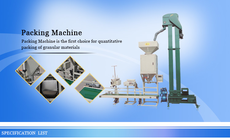 Hld-Packing-Machine-with-Elevator