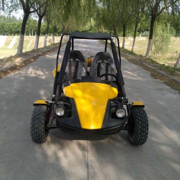 2019 newest 150cc/250cc cheap adults racing go kart