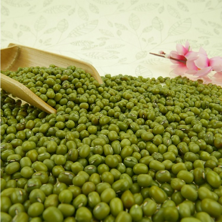 Grade A Green Mung Bean With Favourable Price
