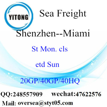 Shenzhen Port Sea Freight Shipping To Miami