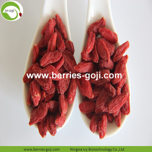 Factory Supply Fruit Premium Super Grade  Goji Berries