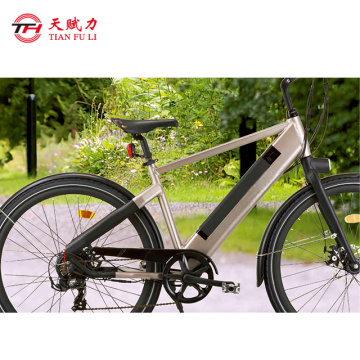 Customized rechargeable 48v lithium battery for e-bike