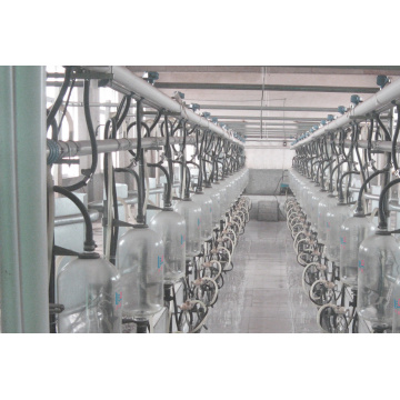 Automatic fishbone bottle milking parlor