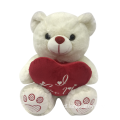 Valentine Plush Bear White