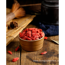 Low Pesticides EU Standard Goji Berry