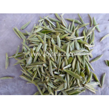 100% Natural Silver Needle White Tea