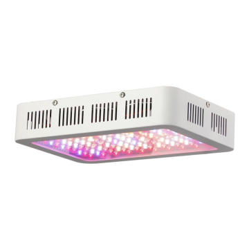 Hydroponics 1000w COB Zelenina plné spektrum LED Grow Light
